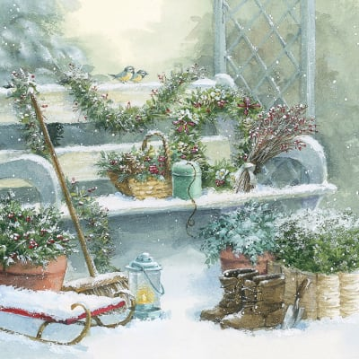 Gardening in Winter (Bi)